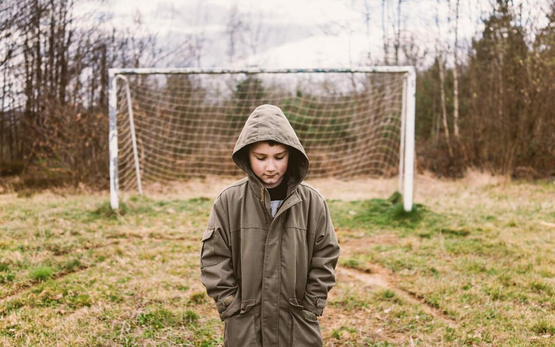 ley orgánica de protección integral a la infancia y la adolescencia frente a la violencia